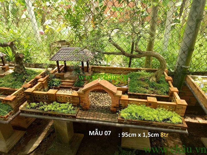 Tiểu Cảnh Nhà vườn và Bonsai mini phần 2