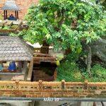 Tiểu Cảnh Nhà vườn và Bonsai mini
